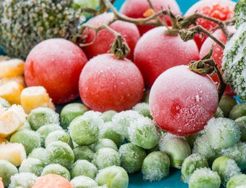 Blast chiller: verhoog kwaliteit en efficiëntie in de keuken